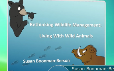 Wild animals on YouTube